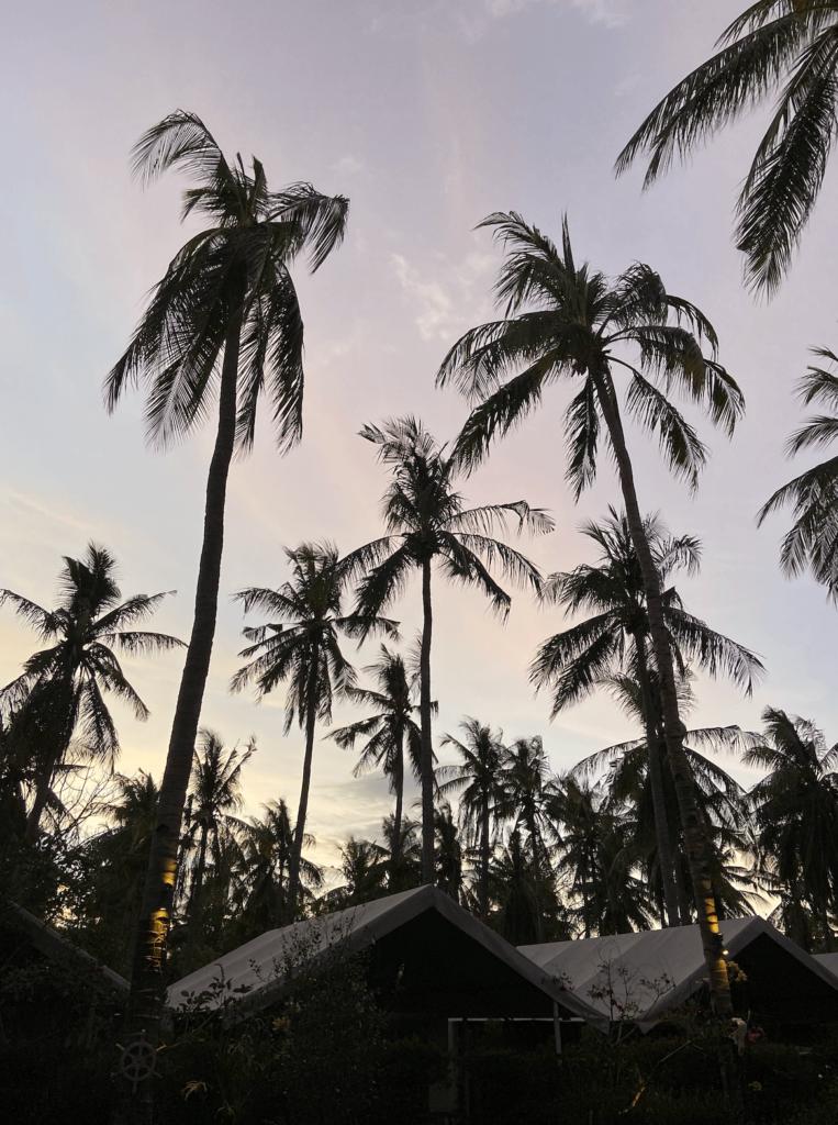Наше жилье на Гили Траванган
