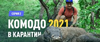 Янош Бачин на Комодо 2021